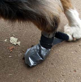 Duct Tape Dog Booties